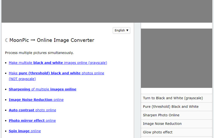 Denoise the image with MoonPic Online Image Converter