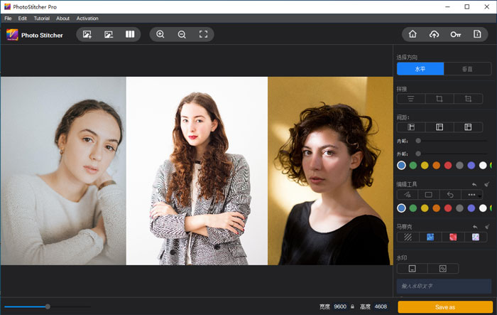 The images are imported into Photo Stitcher